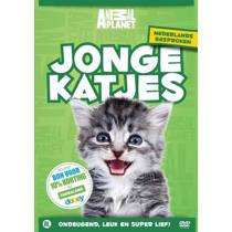 Animal Planet Kids - Jonge katjes (DVD)