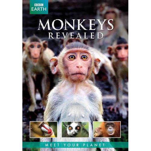 BBC earth - Monkey's revealed (DVD) kopen