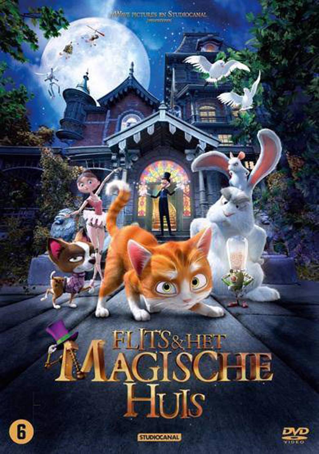 Flits en het magische huis (DVD)