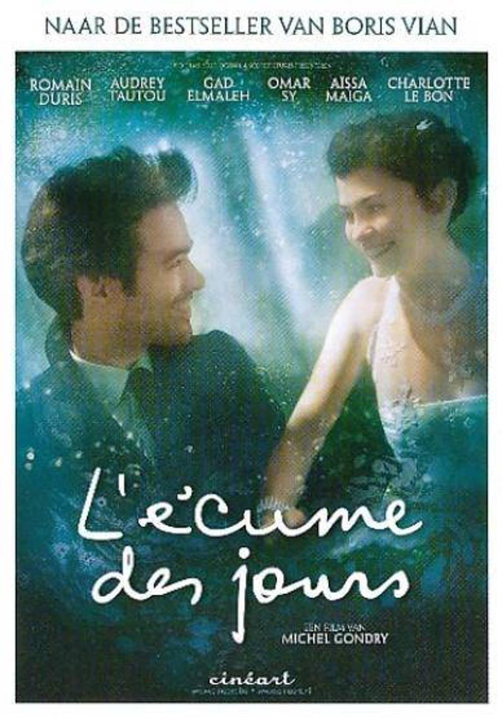 L'ecume des jours (DVD)