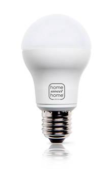 LED lamp (10,8W E27)