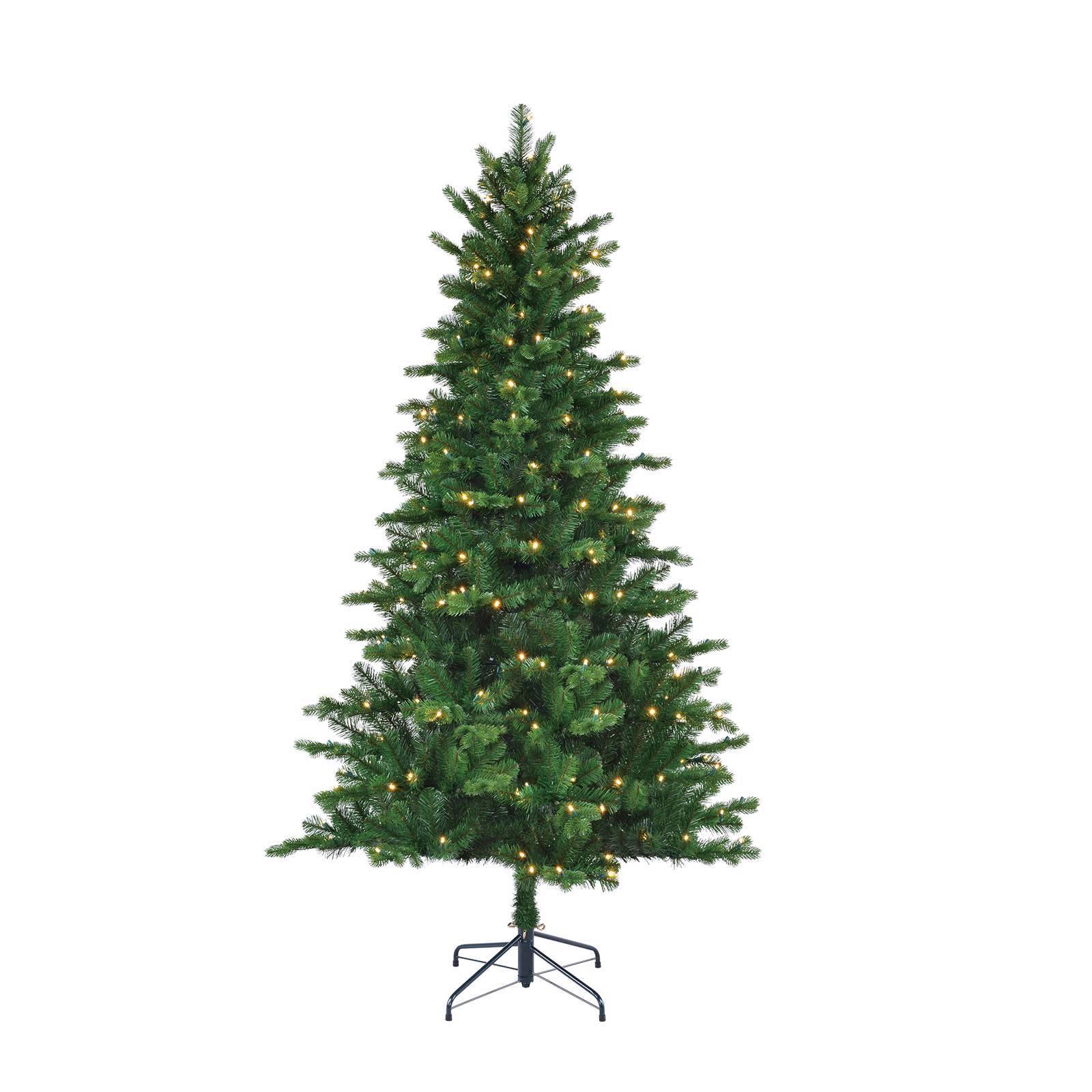 Black Box verlichte kerstboom Milton (h185 x ø112 cm)