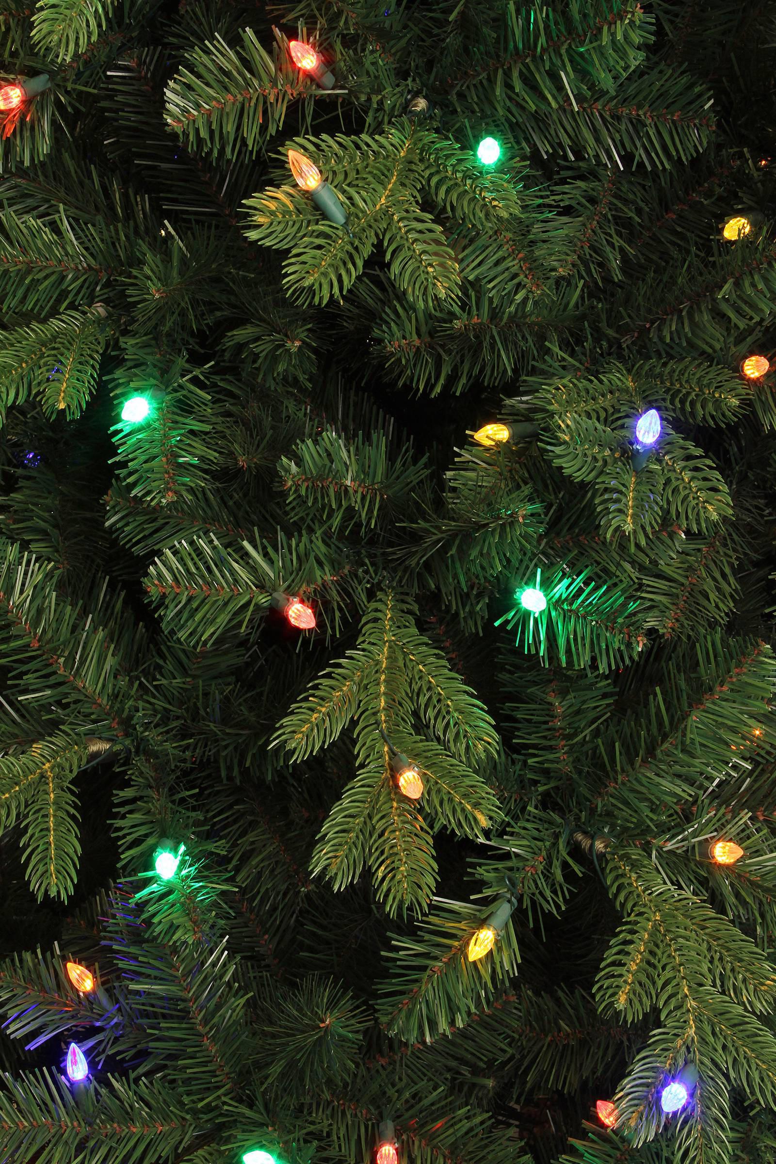 Black Box verlichte kerstboom Milton (h185 x ø112 cm)   wehkamp
