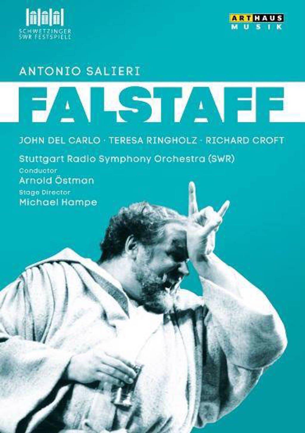 Carlo,Ringholz,Croft,Ziegler - Falstaff, Schwetzingen Festival 199 (DVD)