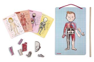 leer het menselijk lichaam kennen magnetische puzzel