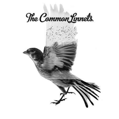 The Common Linnets - The Common Linnets (CD) kopen