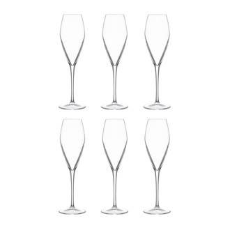 Atelier champagneglas (Ø7,5 cm) (set van 6)