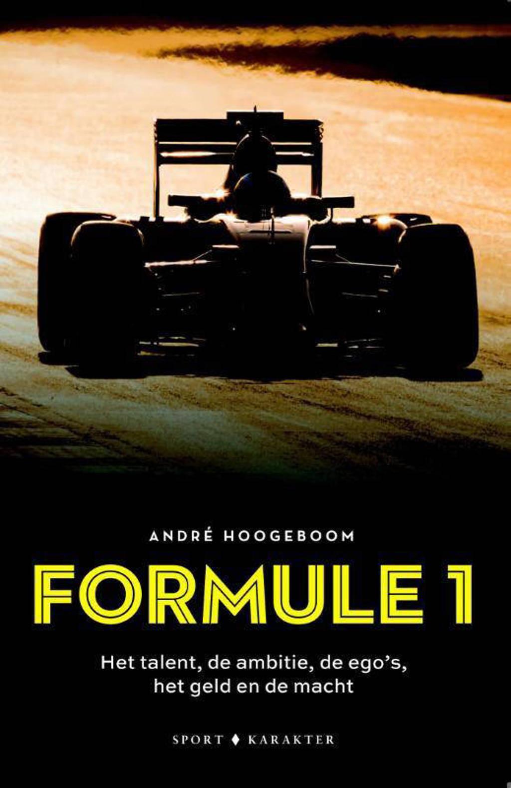 Formule 1: Het talent, de ambitie, de ego's het geld en de macht - André Hoogeboom