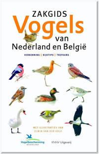 Zakgids Vogels van Nederland en België - Luc Hoogenstein, Ger Meesters en Jip Louwe Kooijmans