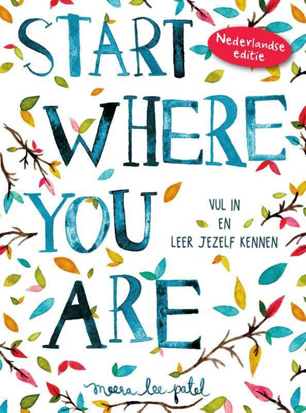 Start where you are - Meera Lee Patel