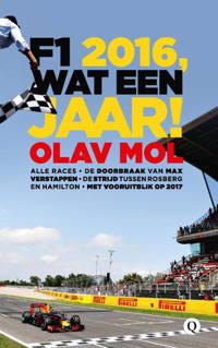 F1 2016, wat een jaar! - Olav Mol