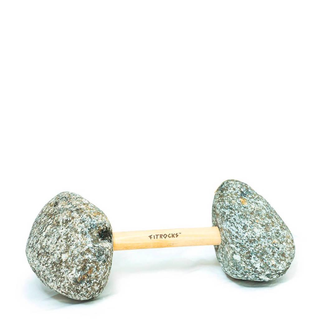 Fitrocks 2 kg dumbbell 2 kg