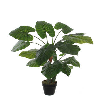 kunstplant Taro (h90 cm)