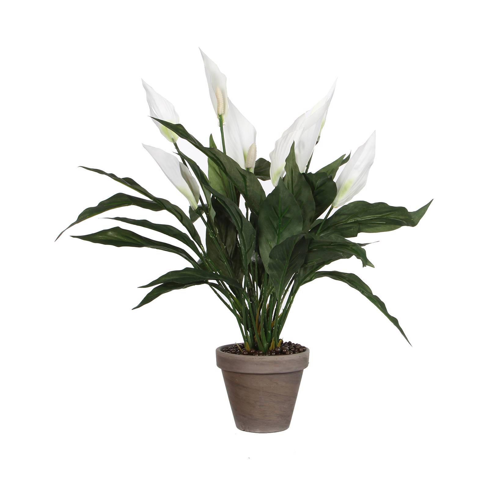 kunstplant Spathiphyllum (h50 cm)