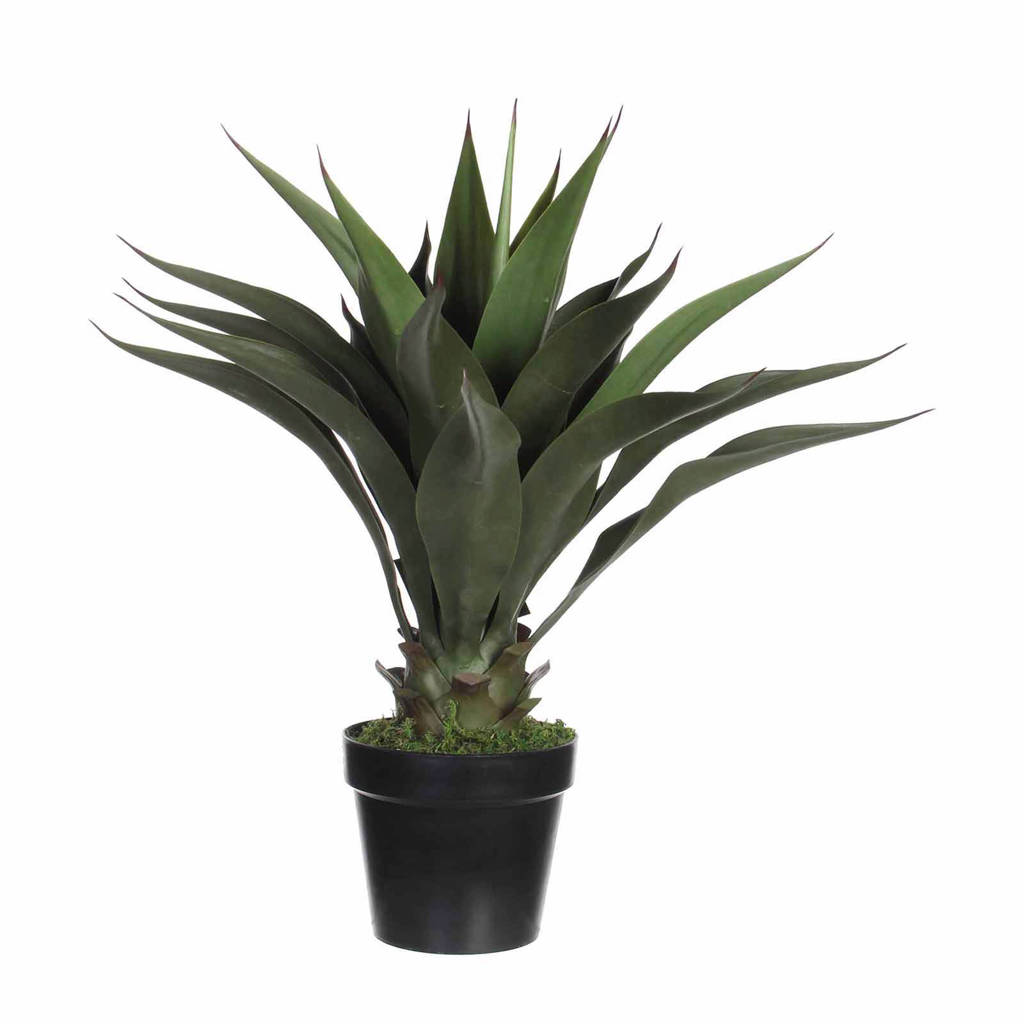 Mica kunstplant Agave (h60 cm)