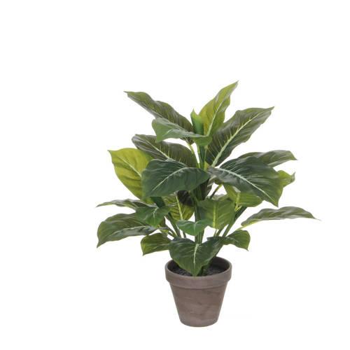 Mica kunstplant Evergreen (h49 cm) kopen
