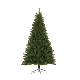 kerstboom Nelson (h155 x ø83 cm)
