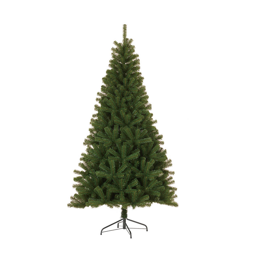 Black Box kerstboom Nelson (h185 x ø109 cm)