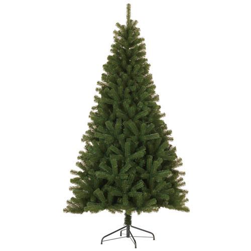 Black Box kerstboom Nelson (h215 x ø114 cm) kopen