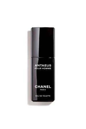 Antaeus eau de toilette - 50 ml