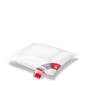 donzen Comfort 65 kussen (60x70 cm)  (Ganzendons)