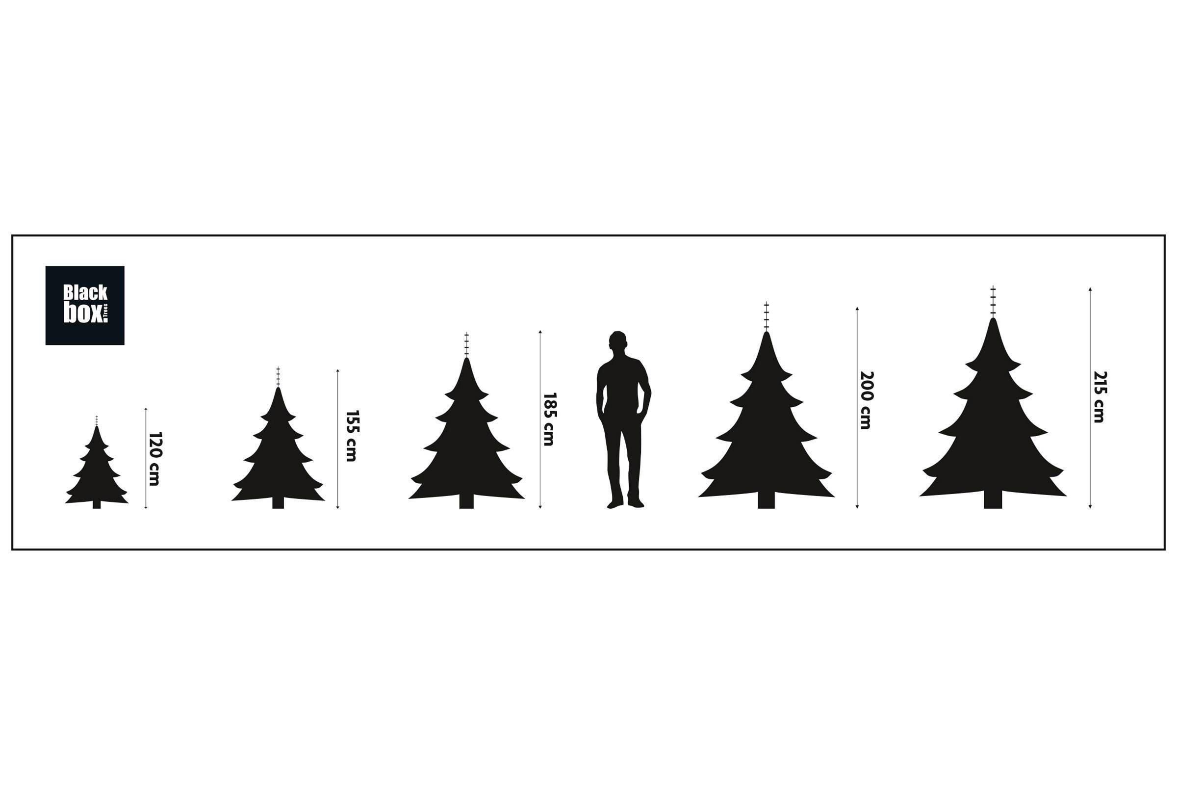 black box kerstboom 215x145 cm wehkamp