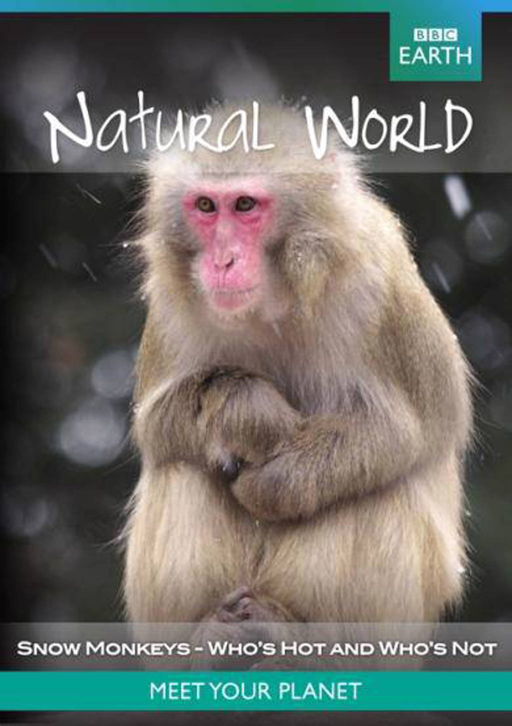 BBC earth - Natural world natural world collection snow monkeys (DVD)
