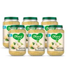 babyvoeding bloemkoolschotel 8+ mnd (6 x 200 gram)