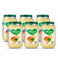 Olvarit Appel Koek - fruithapje voor baby's vanaf 8+ maanden - 6x200 gram babyvoeding in een fruitpotje