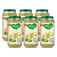 Olvarit Broccoli Kalkoen Aardappel - babyhapje voor baby's vanaf 12+ maanden - 6x250 gram babyvoeding in een maaltijdpotje