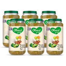 babyvoeding broccoli rundvlees rijst 15+ mnd (6 x 250 gram)