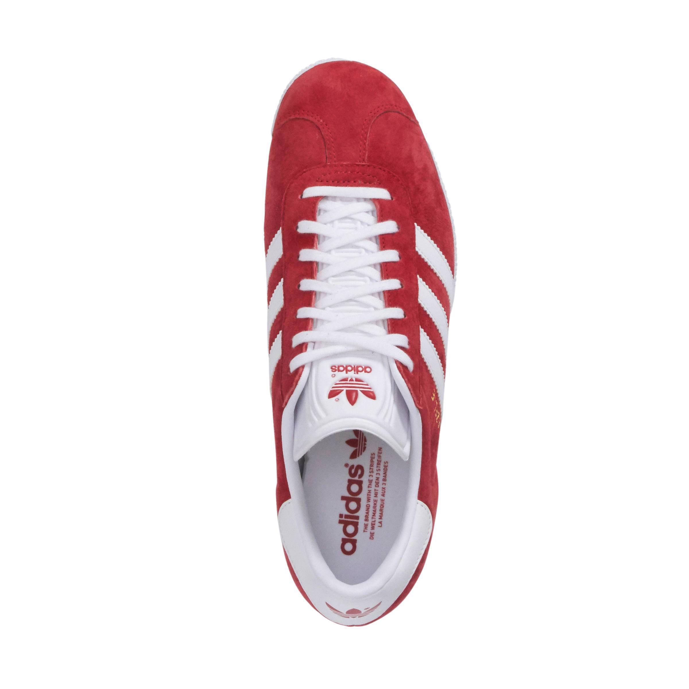 adidas originals gazelle rood