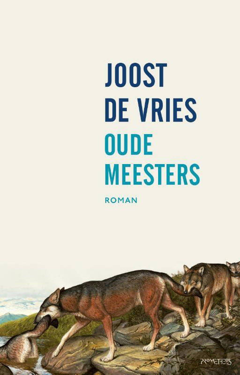 Oude meesters - Joost de Vries