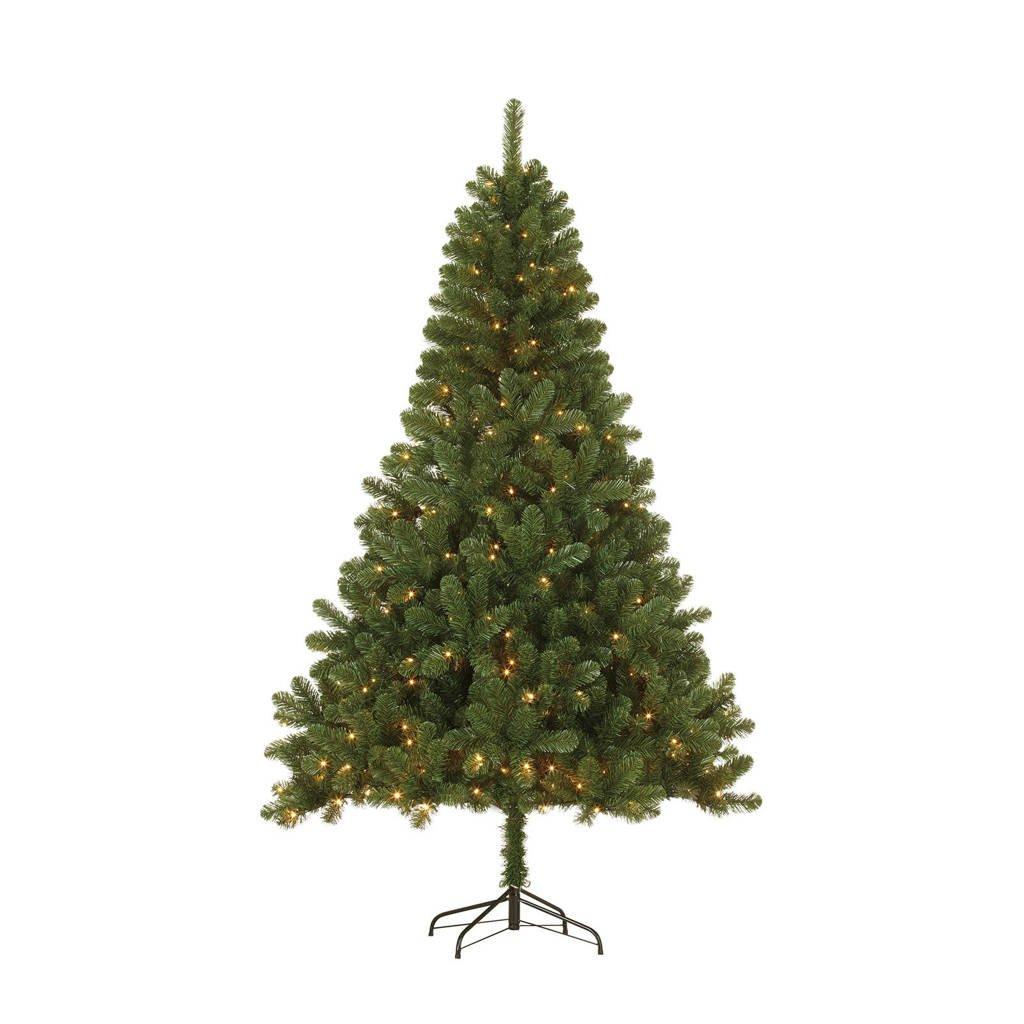 Black Box kerstboom Canmore LED (h155 x ø91 cm), Ja