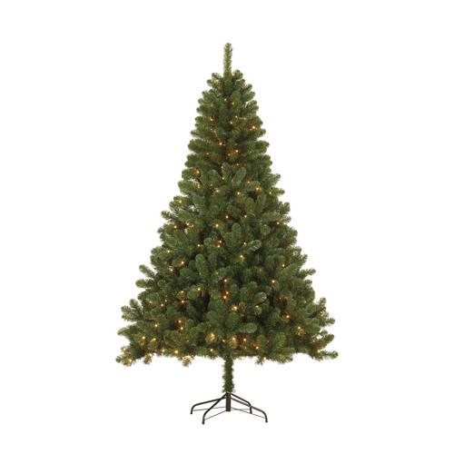 Black Box verlichte kerstboom Canmore (h185 x ø115 cm) kopen