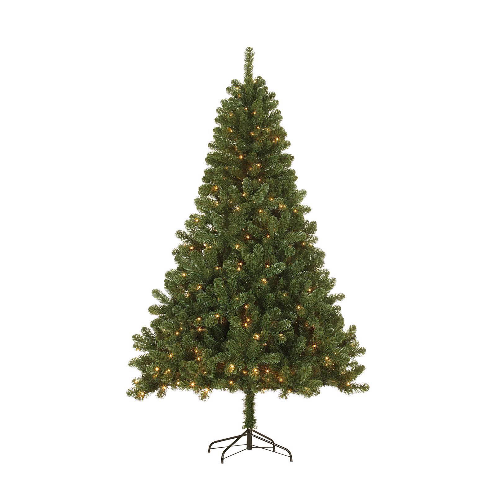 Black Box verlichte kerstboom Canmore (h185 x ø115 cm)