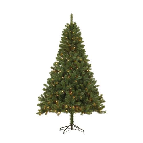Black Box verlichte kerstboom Canmore (h215 x ø127 cm) kopen