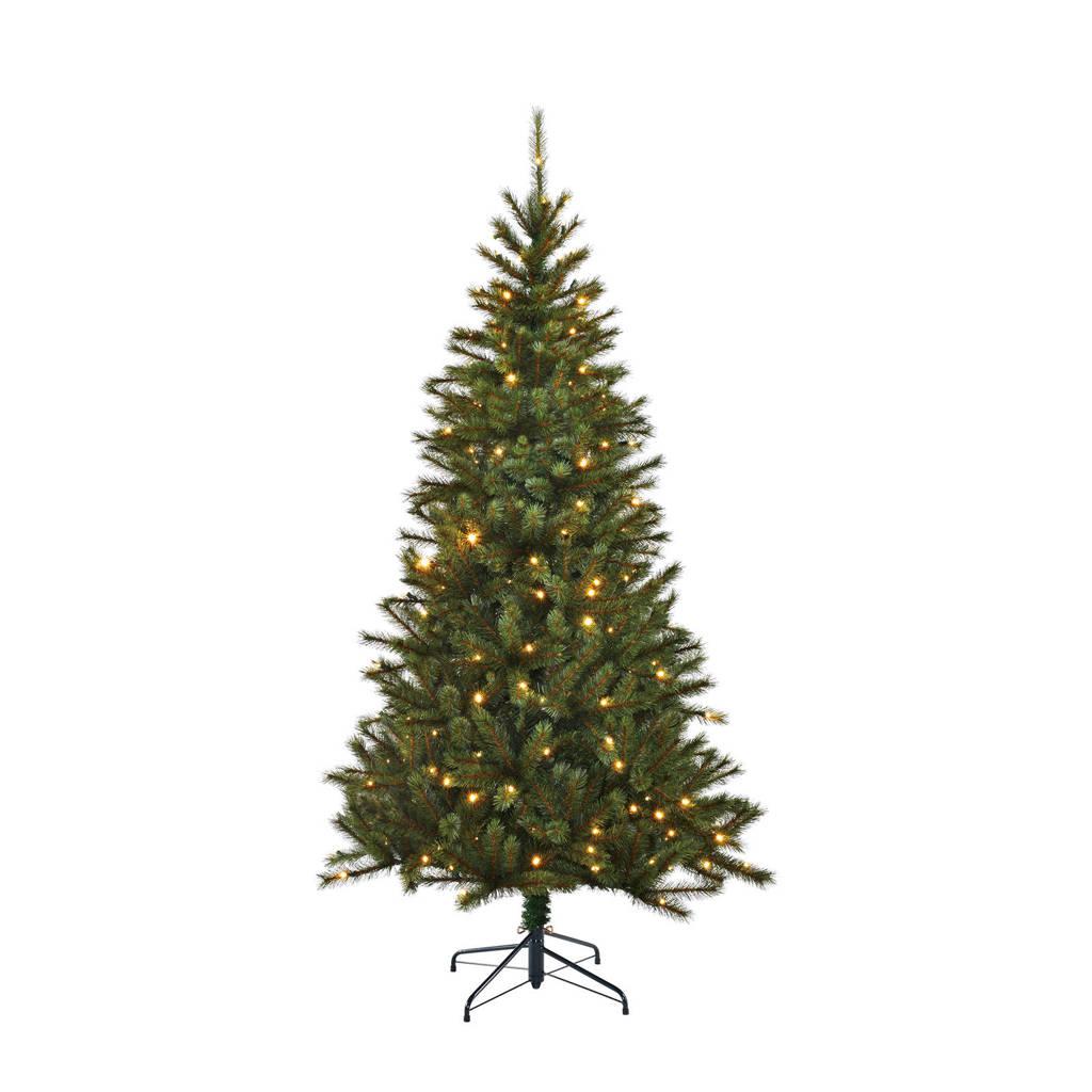 Black Box Trees verlichte kerstboom Kingston (h155 x ø91 cm), Ja, h155 x ø86
