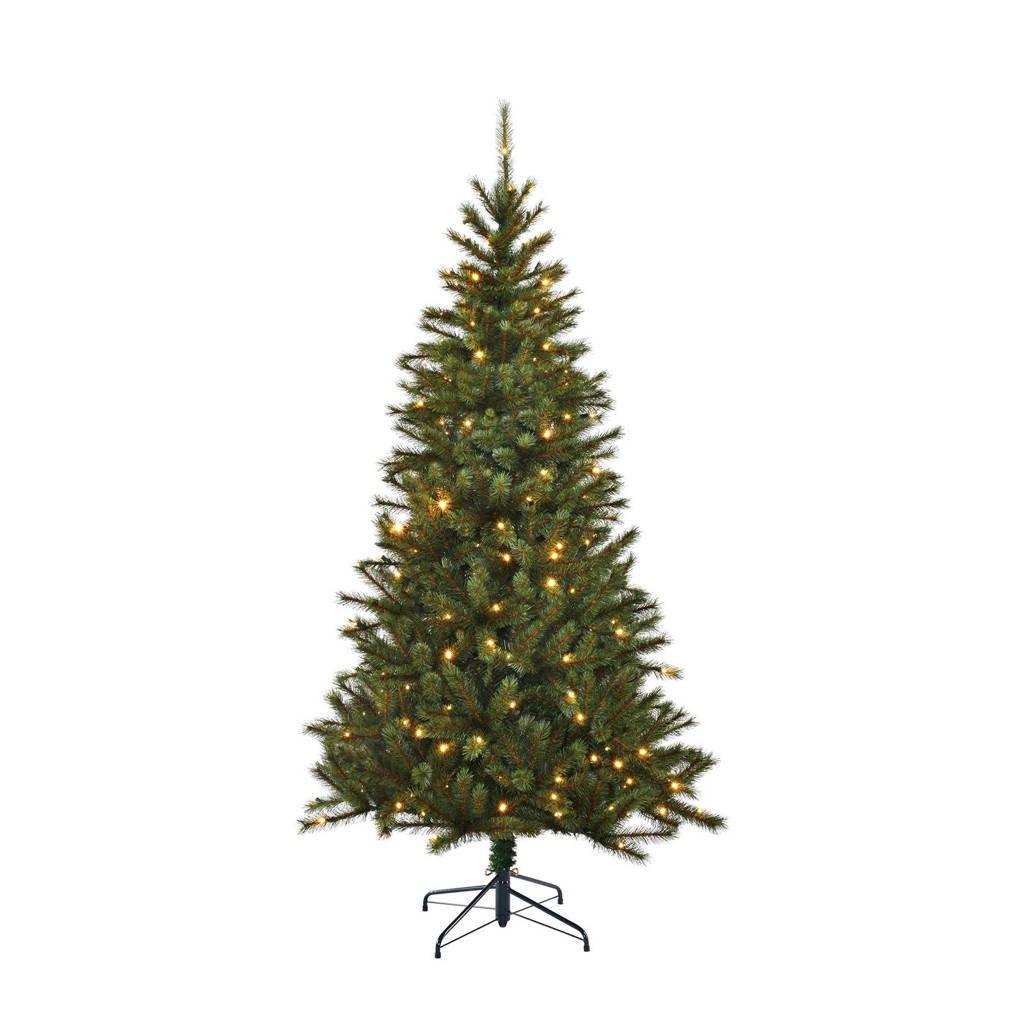 Black Box verlichte kerstboom Kingston (h155 x ø91 cm), Ja, h155 x ø86