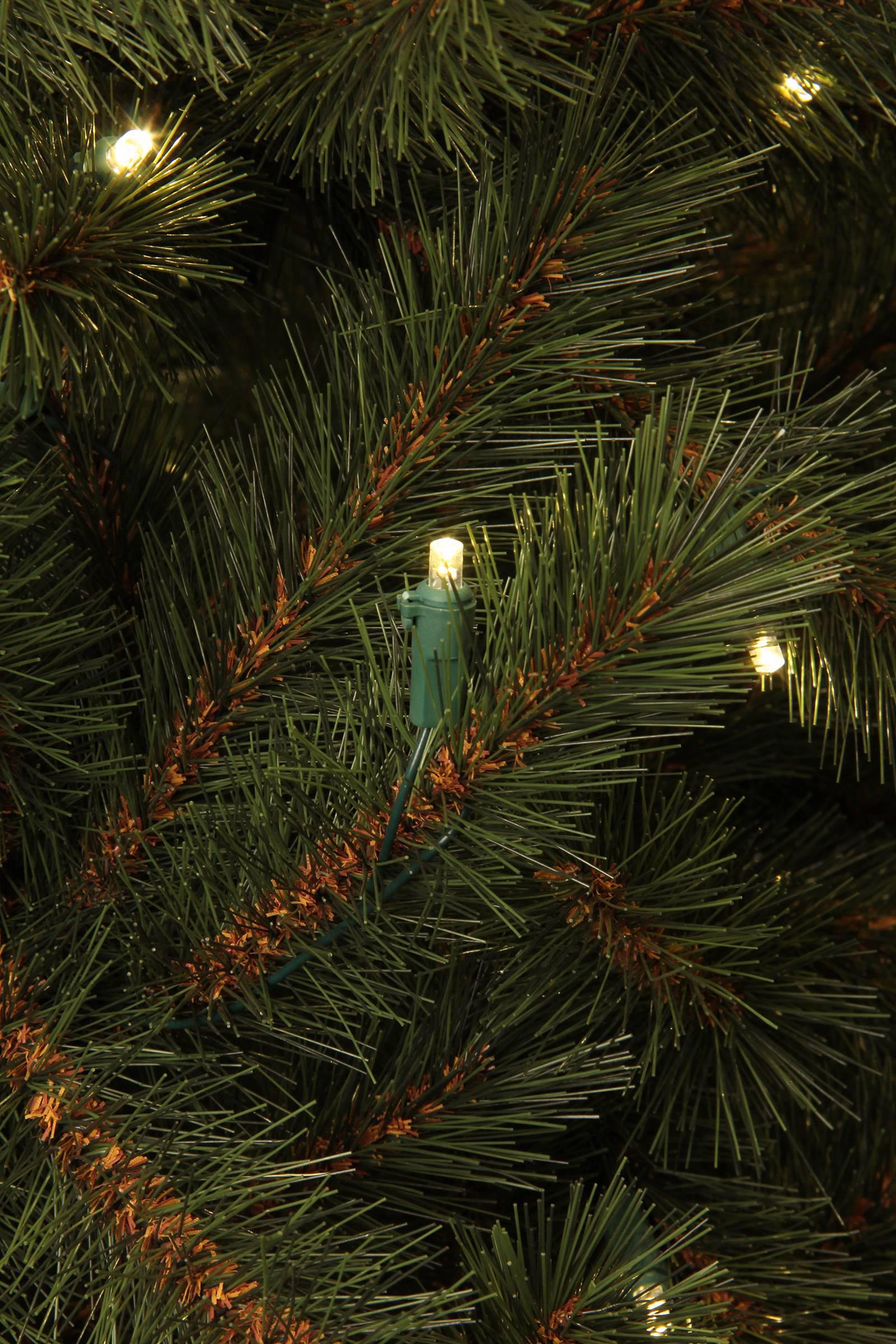 Black Box verlichte kerstboom Kingston (h215 x ø117cm)   wehkamp
