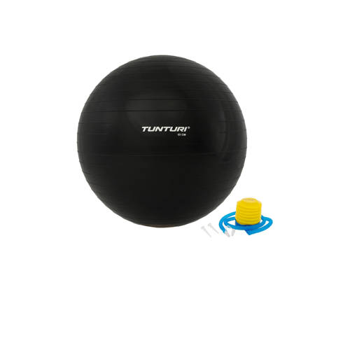 Tunturi 65 cm fitness bal 65 cm kopen
