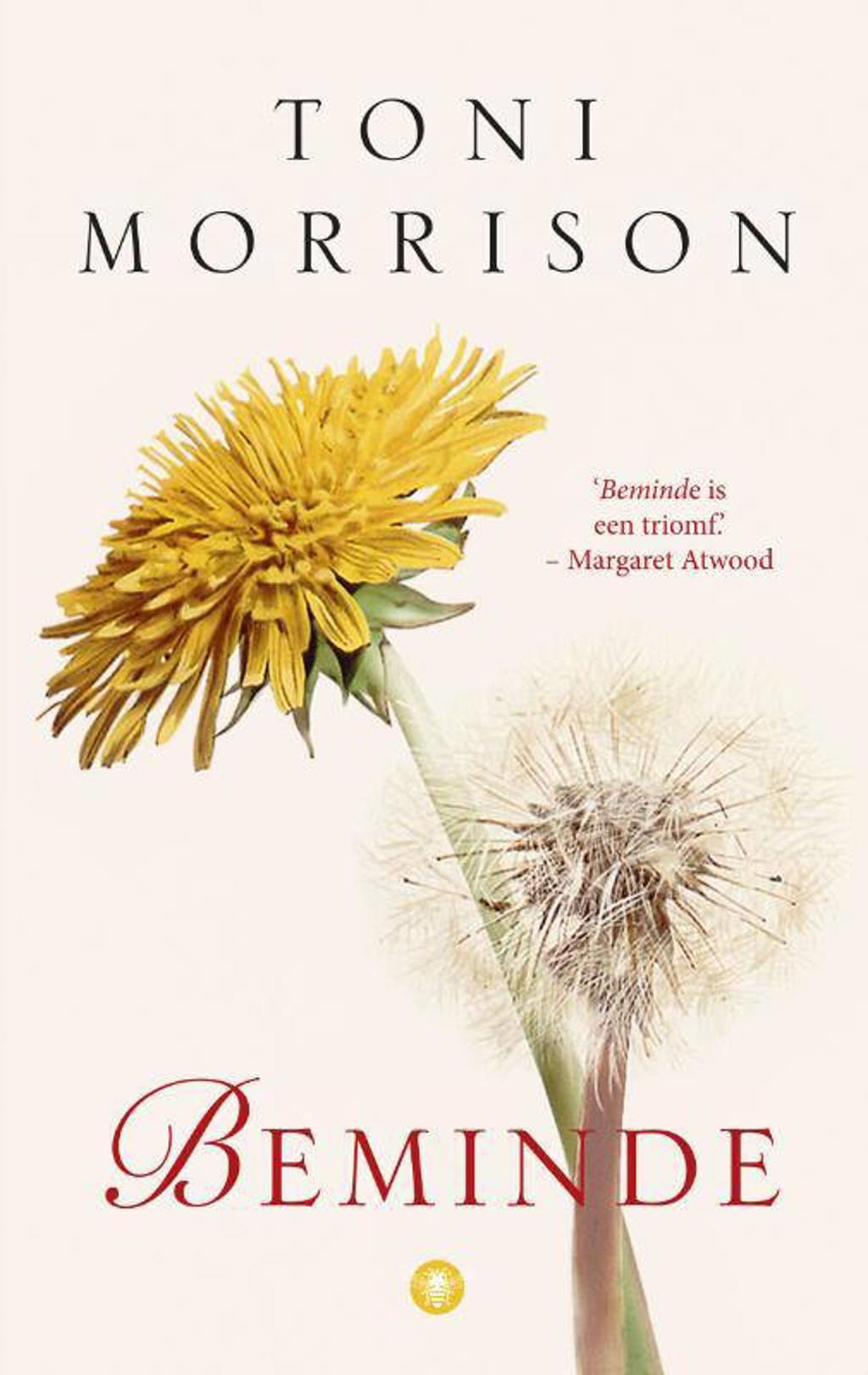 Beminde - Toni Morrison
