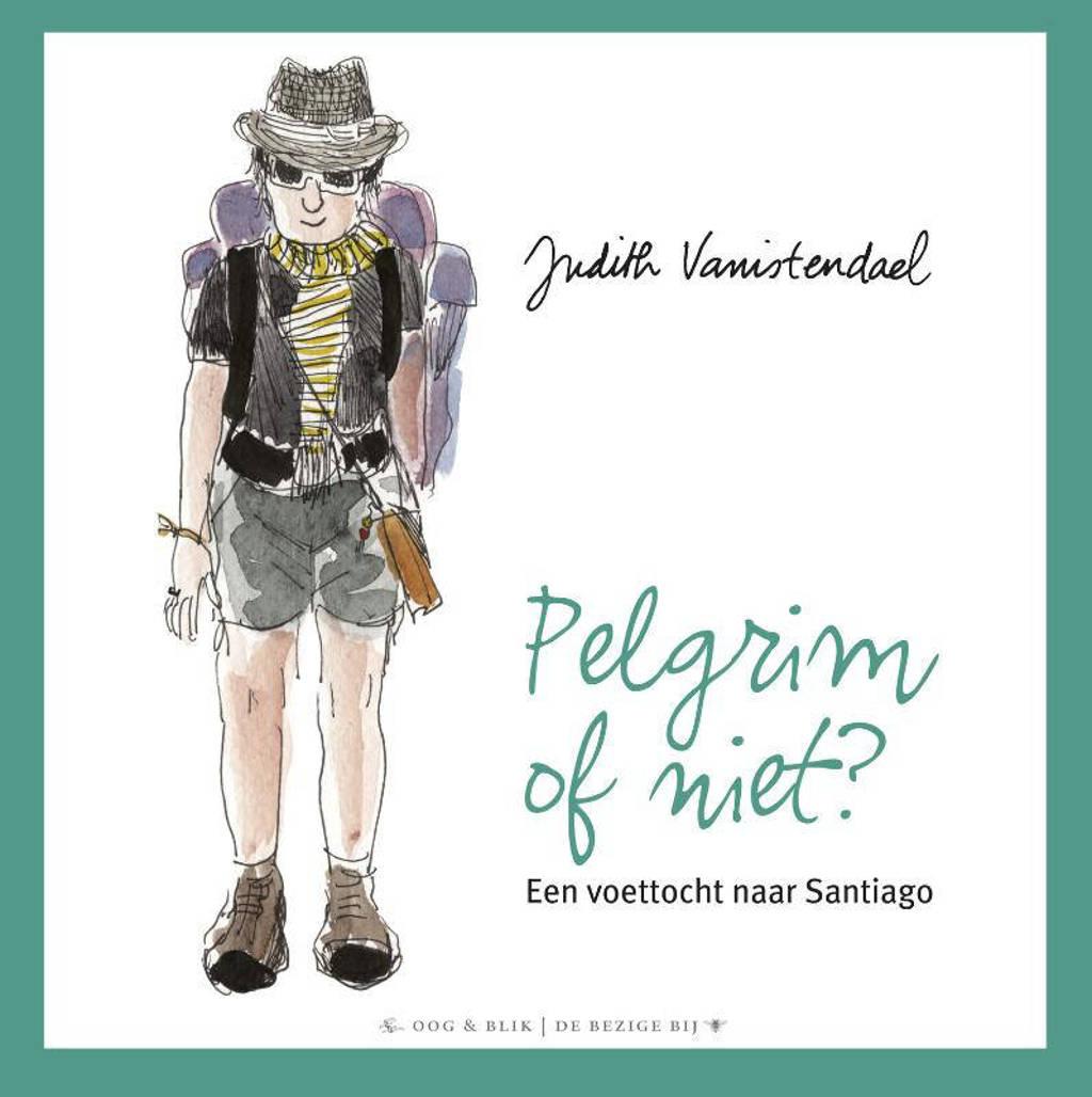 Pelgrim of niet? - Judith Vanistendael