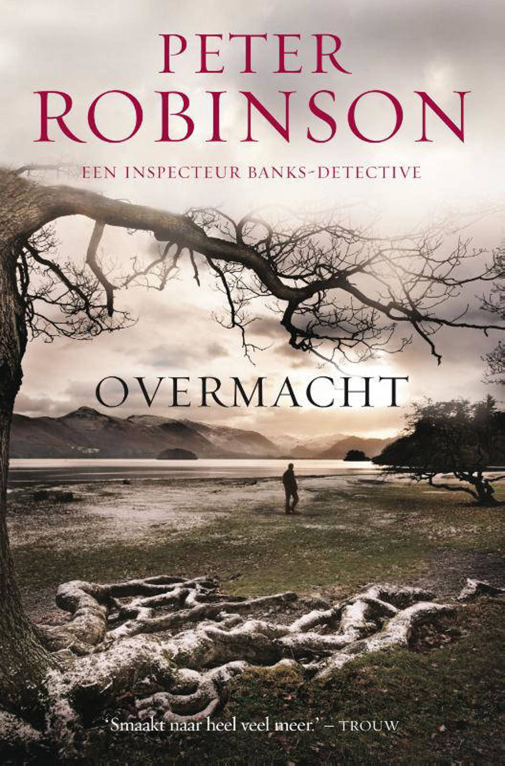 DCI Banks: Overmacht - Peter Robinson
