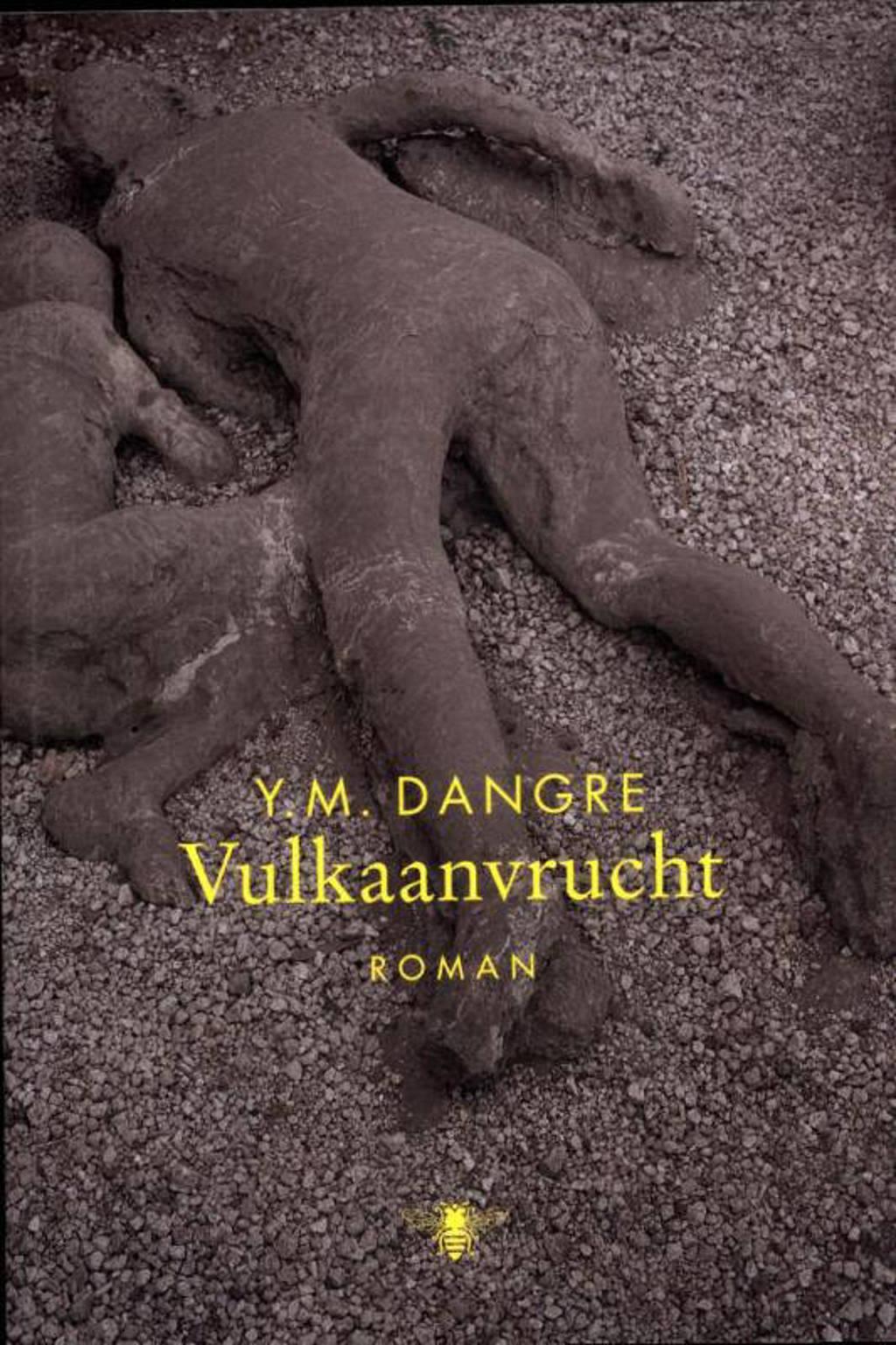 Vulkaanvrucht - Y.M. Dangre