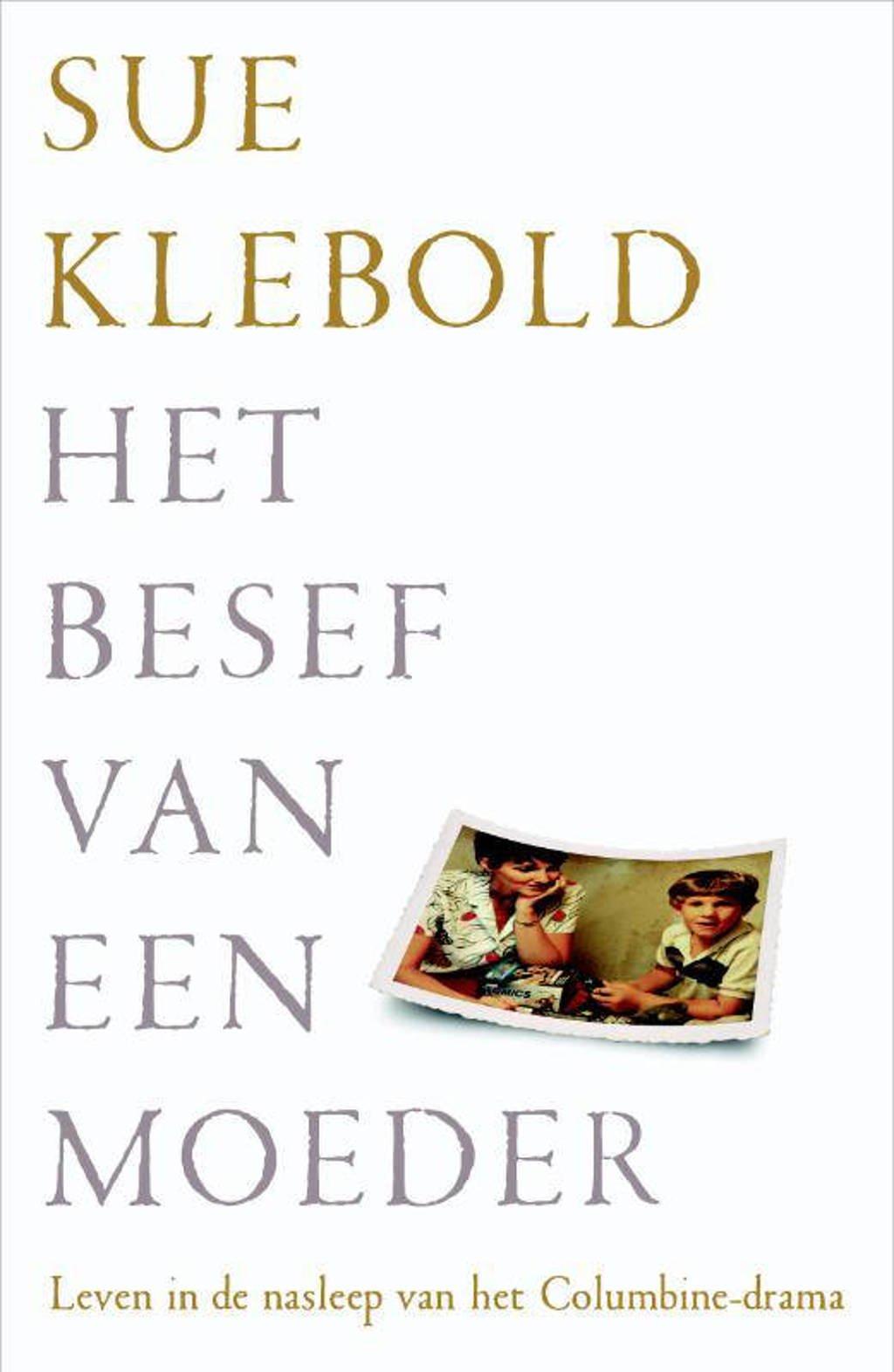 Het besef van een moeder - Sue Klebold