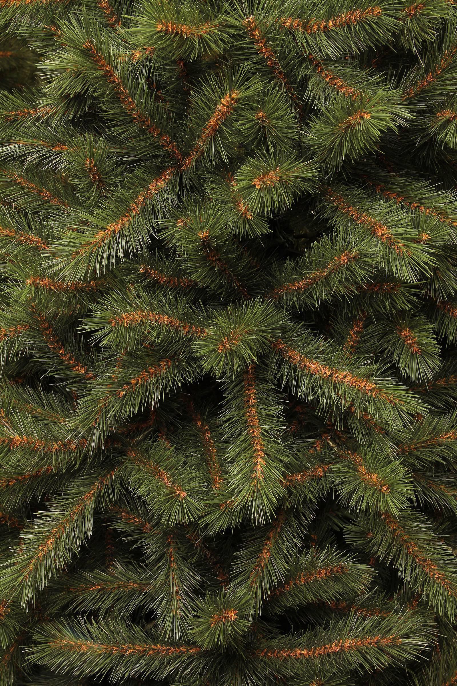 black box kerstboom kingston h155 x 86 cm wehkamp