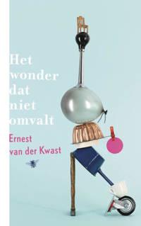 Het wonder dat niet omvalt - Ernest van der Kwast
