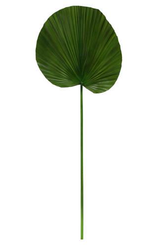 kunstplant palmblad