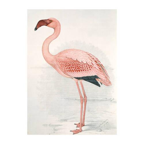 ixxi Muurdecoratie Greater Flamingo